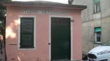 studio-veterinario-uscio-1200x675