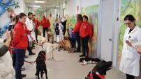 visita-cani-bambini-ospedale-91